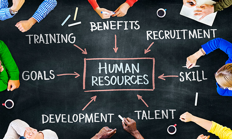 Human Resources Diagram